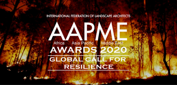 2020 AAPME Awards: The results are here!